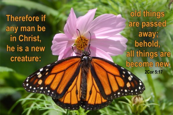 Monarch 2Cor. 5:17
