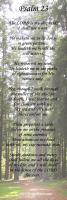 View the image: Psalm 23, Trees, 2x6
