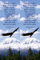 View the image: Hope, mountain, Isaiah 40:31 NIV, photo size