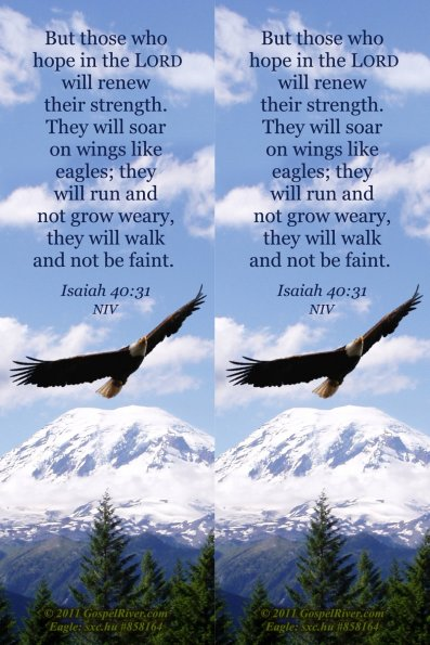 Hope, mountain, Isaiah 40:31 NIV, photo size