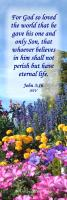 View the image: John 3:16 NIV, flowers, 2x6