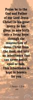 View the image: Living Hope, 1Peter 1:3-4 NIV