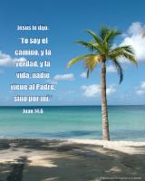 View the image: Playa tropical, Juan 14:6