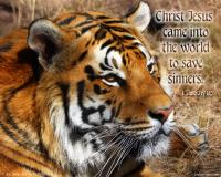 View the image: Bengal Tiger, 1Timothy 1:15