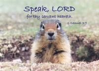 View the image: Prairie_Dog-Speak-7x5