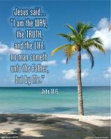 View the image: Tropical beach, John 14:6