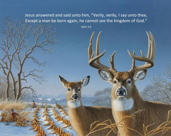 Buck and Doe, John 3:3, 16x20