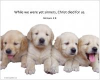 View the image: Puppies, Romans 5:8